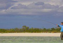 Your Bahamas: Kit