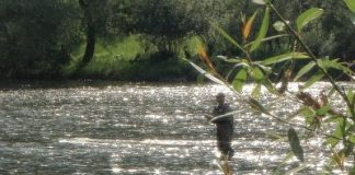 Hot and humid conditions at this years world championships in Poland - home to many fly fishing developments.