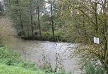 Forget the 'percentage' water and learn how to fish the challenging water - well illustrated by this area of la Ternoise in northern France