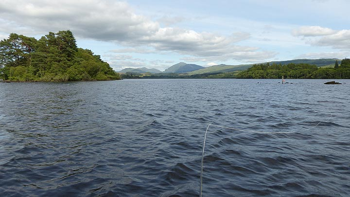 A nice ripple with big trout sporadically rising out of reach!