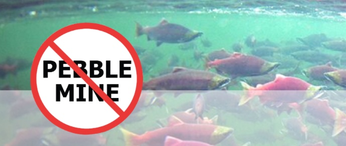 pebble mine an environmental disaster waiting The us environmental protection agency is maintaining restrictions on the  pebble mine in southwest alaska, an unexpected reversal of what.