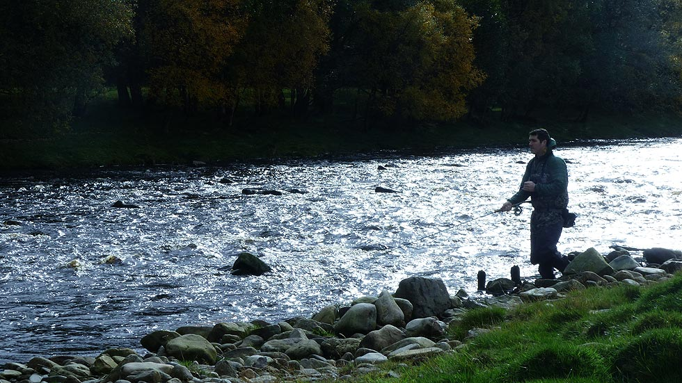 Fishing with Salmologic on the South Tyne