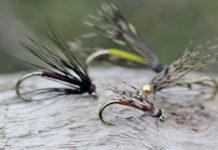 Spider Fishing