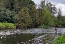 Fishing the Blackwater
