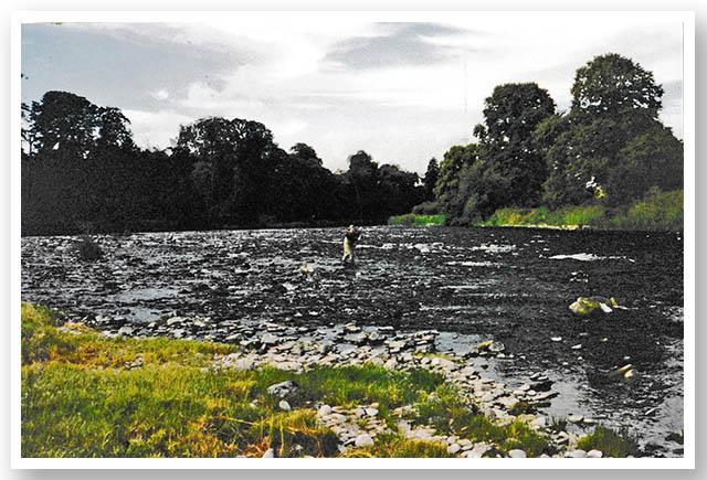River Tweed - Hempseedford