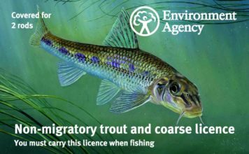 English Fishing licence